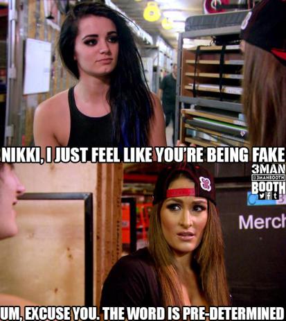 Paige_Nikki_Fake_3MB