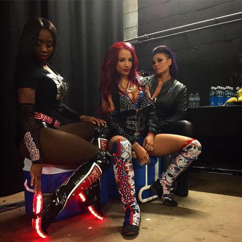 Image Courtesy of the WWE